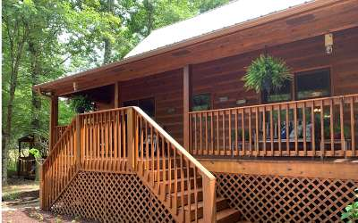 Ellijay Single Family Home For Sale: 45 Newport Drive