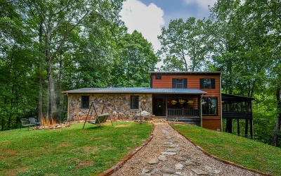 Ellijay Single Family Home For Sale: 192 Wolf Pen Drive