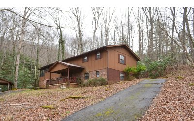 Hiawassee Single Family Home For Sale: 4215 White Oak Dr