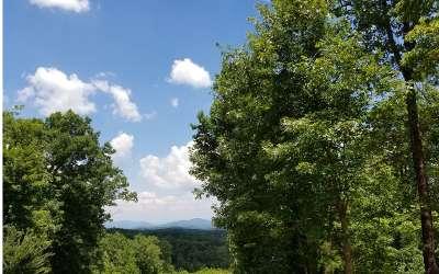 Blue Ridge Residential Lots & Land For Sale: Lot 24 Staurolite