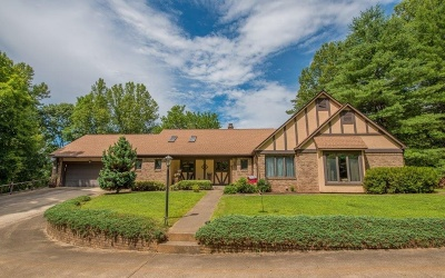 Blue Ridge Single Family Home For Sale: 271 Lost Branch Rd