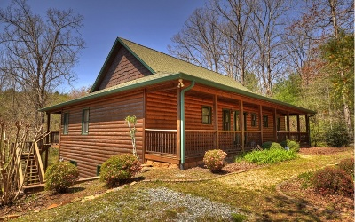 Blue Ridge Single Family Home For Sale: 246 Lebanon Road
