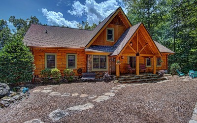 Ellijay Single Family Home For Sale: 145 Laurel Glen
