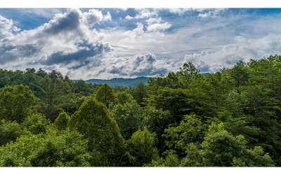Blue Ridge Residential Lots & Land For Sale: Maxwell Mountain Rd