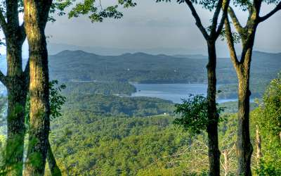 Blue Ridge Residential Lots & Land For Sale: Lt 12 Rocky Face Road