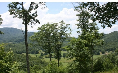 Murphy Residential Lots & Land For Sale: Spring View Drive
