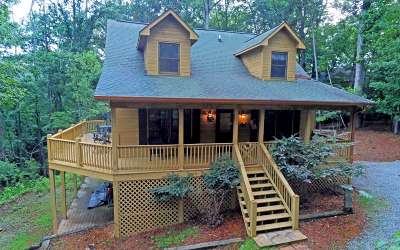 Ellijay Single Family Home For Sale: 444 Darian Way