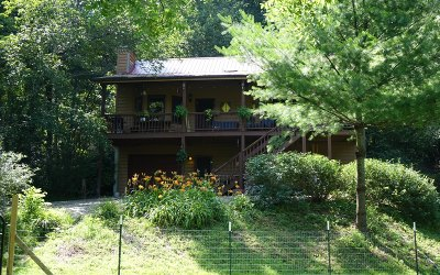 Blairsville Single Family Home For Sale: 323 Foxfire Rd