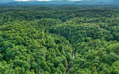 McCaysville Residential Lots & Land For Sale: Fightingtown Creek