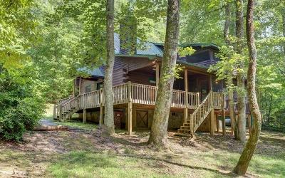 Blue Ridge Single Family Home For Sale: 38 Forest Lane