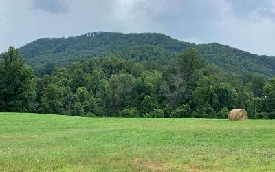 Hayesville Residential Lots & Land For Sale: Hwy 64 East