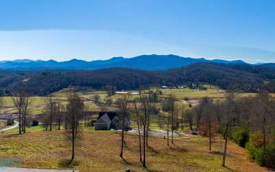 Hayesville Single Family Home For Sale: 345 Jack Groves Lane