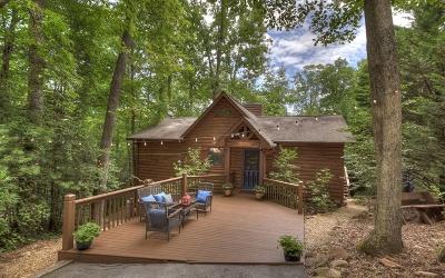 Blue Ridge Single Family Home For Sale: 83 Hemlock Trail