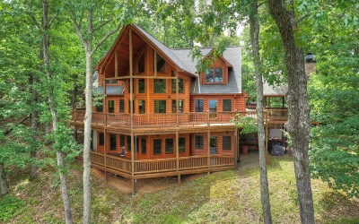 Mineral Bluff Single Family Home For Sale: 129 Mountain High Trail