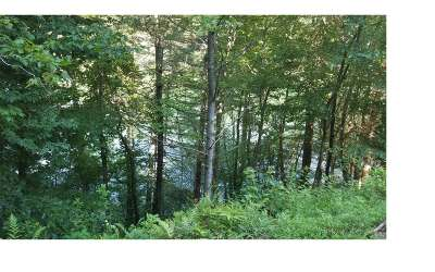 Residential Lots & Land For Sale: Lt 17 Wilderness Lake Cir