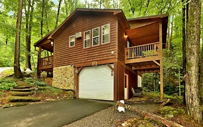 Murphy Single Family Home For Sale: 60 Tellico Cabins Trail