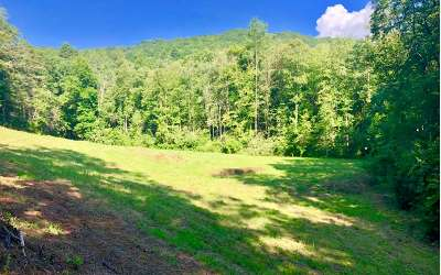 Murphy Residential Lots & Land For Sale: Dinkins Creek Road