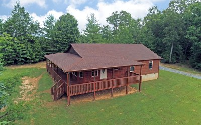Blairsville Single Family Home For Sale: 38 Beaver Ridge