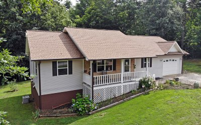 Blairsville Single Family Home For Sale: 156 12 Point Rd