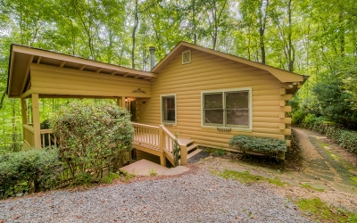 Ellijay Single Family Home For Sale: 128 Indian Rock Ridge