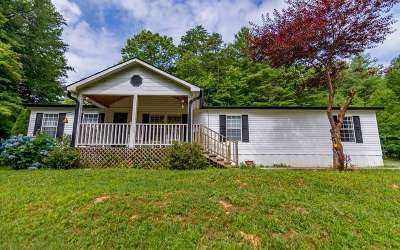 Blue Ridge Single Family Home For Sale: 962 N Old Aska Rd