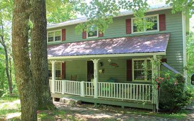 Ellijay Single Family Home For Sale: 519 Southern Pines Drive
