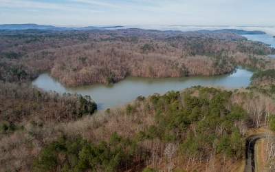 Ellijay Residential Lots & Land For Sale: Lt252 Carters View Drive
