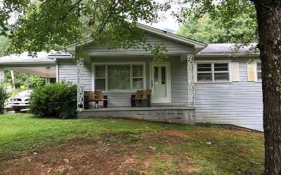 Hiawassee Single Family Home For Sale: 1565 Taylor Rd