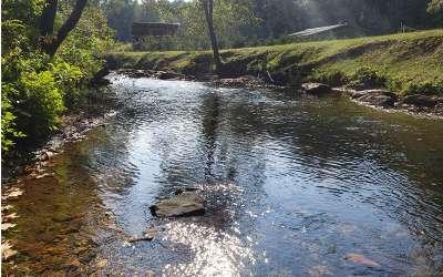 Blue Ridge Residential Lots & Land For Sale: Chestnut Gap Rd