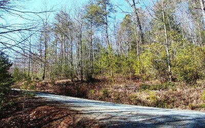 Blue Ridge Residential Lots & Land For Sale: L 429 North Hiawatha Trail