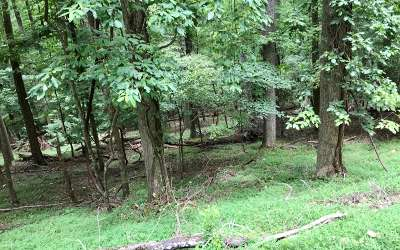 Ellijay Residential Lots & Land For Sale: M109 Skyview Drive