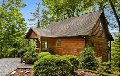 Blue Ridge Single Family Home For Sale: 241 Mountain Laurel Lane