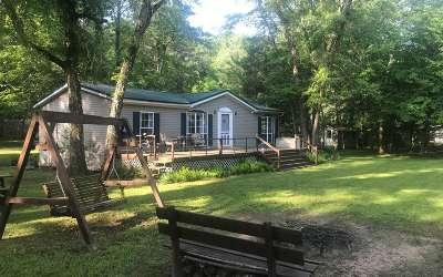 Blue Ridge Single Family Home For Sale: 306 Spiller Rd
