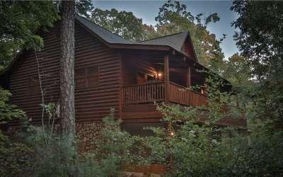 Fannin County Single Family Home For Sale: 145 Daybreak Blvd