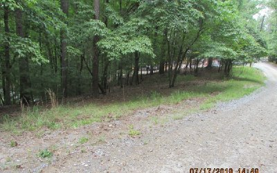 Ellijay Residential Lots & Land For Sale: 721 Armor Court