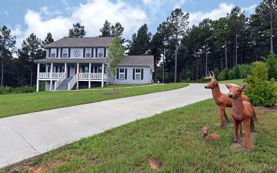 Blairsville Single Family Home For Sale: 91 Stables Loop