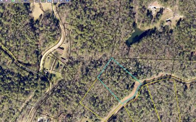 Ellijay Residential Lots & Land For Sale: 39 Maple Rest Trail