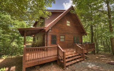 Ellijay Single Family Home For Sale: 228 Trails End Ridge