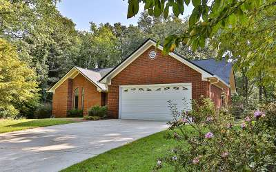 Ellijay Single Family Home For Sale: 423 Westwoods Drive