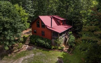 Blue Ridge Single Family Home For Sale: 378 Mangums Trail