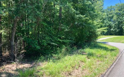Ellijay Residential Lots & Land For Sale: Lt149 Sally Circle