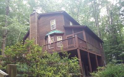 Blairsville Single Family Home For Sale: 19 Violet Road