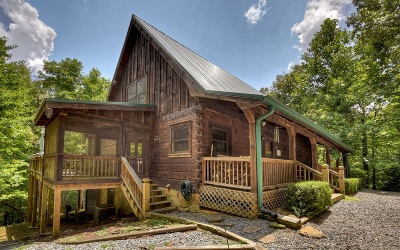 Mineral Bluff Single Family Home For Sale: 210 Indian Lake Road