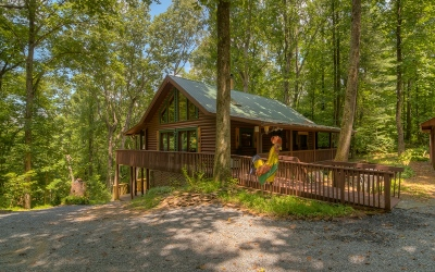 Ellijay Single Family Home For Sale: 346 Rusty Lady Ln