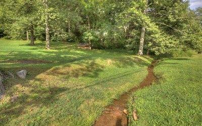 Blue Ridge Single Family Home For Sale: 6991 Blue Ridge Drive