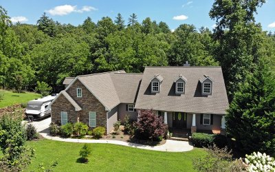 Blairsville Single Family Home For Sale: 117 Chimney Stone Rd