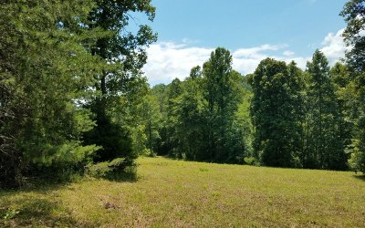 Hayesville Residential Lots & Land For Sale: 13 Ac Matheson Cove Rd
