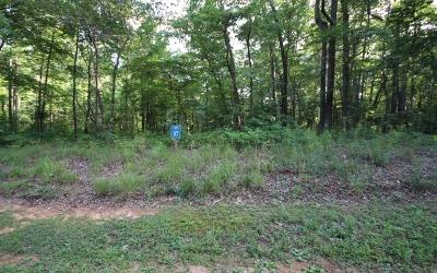 Ellijay Residential Lots & Land For Sale: Lt 97 Doll Mountain