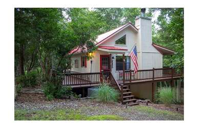 Blairsville Single Family Home For Sale: 214 Justa Road