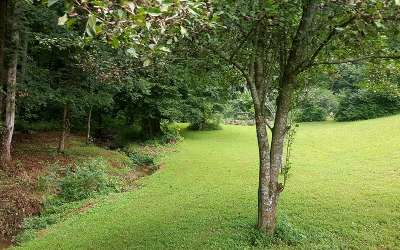 Ellijay Residential Lots & Land For Sale: 1.26a Flat Branch Rd